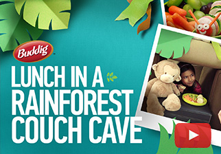 Have Lunch in a Rainforest Couch Cave